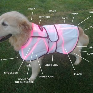 LASERwrap® Dog Coat System